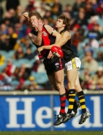 AFL 2003 Rd 20 - Essendon v Richmond