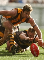 AFL 2003 Rd 22 - Richmond v Hawthorn