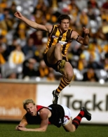 AFL 2004 Rd 11 - Hawthorn v Essendon