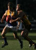 AFL 2004 Rd 15 - Hawthorn v West Coast Eagles