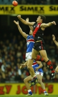 AFL 2004 Rd 22 - Essendon v Western Bulldogs