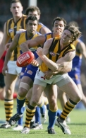 AFL 2005 Rd 18 - West Coast Eagles v Hawthorn