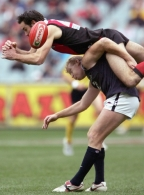 AFL 2005 Rd 21 - Essendon v Carlton