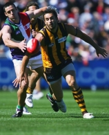 AFL 2006 Rd 1 - Hawthorn v Fremantle