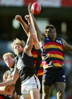 AFL 2006 Rd 9 - Adelaide Crows v Carlton