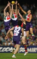AFL 2006 Rd 14 - Fremantle v Essendon