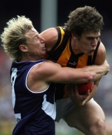 AFL 2006 Rd 18 - Fremantle v Hawthorn