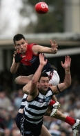 AFL 2006 Rd 21 - Geelong v Melbourne