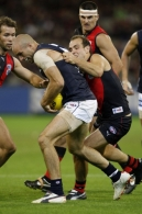 AFL 2008 Rd 03 - Essendon v Carlton