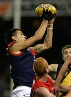 AFL 2008 Rd 12 - Richmond v Melbourne