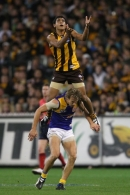 AFL 2008 Rd 14 - Hawthorn v West Coast