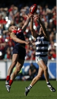 AFL 2009 Rd 06 - Melbourne v Geelong