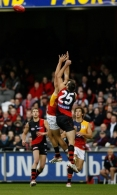 AFL 2009 Rd 11 - Essendon v Adelaide