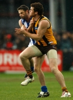 AFL 2009 Rd 15 - Hawthorn v North Melbourne