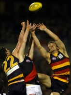 AFL 2009 1st Elimination Final - Adelaide v Essendon