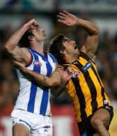 AFL 2010 Rd 05 - Hawthorn v North Melbourne
