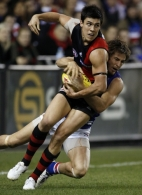 AFL 2010 Rd 10 - Essendon v Western Bulldogs