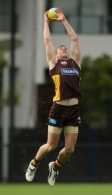 AFL 2010 Training - Hawthorn 170610