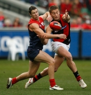 AFL 2010 Rd 15 - Melbourne v Essendon
