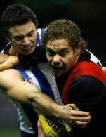 AFL 2010 Rd 17 - North Melbourne v Essendon