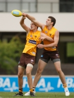 AFL 2011 Training - Hawthorn 180311