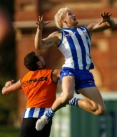 AFL 2011 Training - North Melbourne 140411