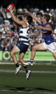 AFL 2011 Rd 11 - Geelong v Western Bulldogs