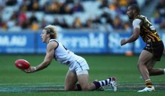 AFL 2011 Rd 11 - Hawthorn v Fremantle
