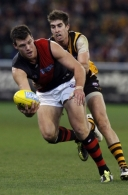 AFL 2011 Rd 14 - Hawthorn v Essendon