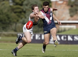 TAC 2012 Rd 07 - Northern Knights v Sandringham Dragons