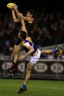 AFL 2012 Rd 07 - Essendon v West Coast