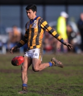 VFL 2012 Rd 21- Williamstown v Sandringham