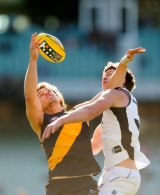 AFL 2012 Rd 23 - Best of Round