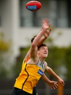 AFL 2012 Training - Hawthorn 261112