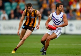 AFL 2013 Rd 04 - Hawthorn v Fremantle