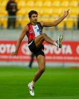 AFL 2013 Training - St Kilda 240413