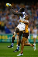 AFL 2013 Rd 05 - Hawthorn v North Melbourne
