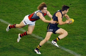 AFL 2013 Rd 09 - Richmond v Essendon