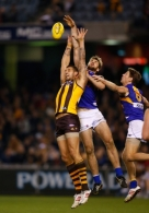 AFL 2013 Rd 13 - Hawthorn v West Coast