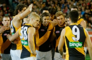 AFL 2013 Rd 23 - Essendon v Richmond