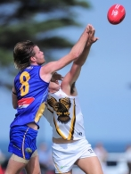 VFL 2014 Rd 01 - Williamstown v Box Hill Hawks