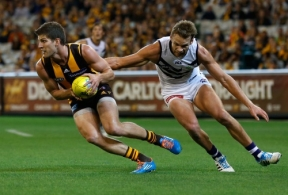 AFL 2014 Rd 03 - Hawthorn v Fremantle