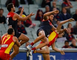AFL 2014 Rd 05 - Melbourne v Gold Coast