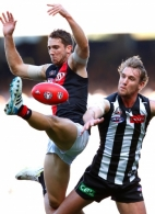 AFL 2014 Rd 06 - Collingwood v Essendon