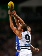 AFL 2014 Rd 10 - Geelong v North Melbourne
