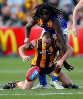 AFL 2014 Rd 12 - Hawthorn v West Coast