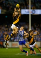 AFL 2014 Rd 12 - North Melbourne v Richmond