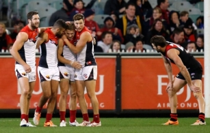 AFL 2014 Rd 13 - Essendon v Melbourne