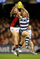 AFL 2014 Rd 15 - Geelong v Essendon