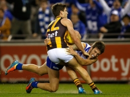 AFL 2014 Rd 16 - North Melbourne v Hawthorn